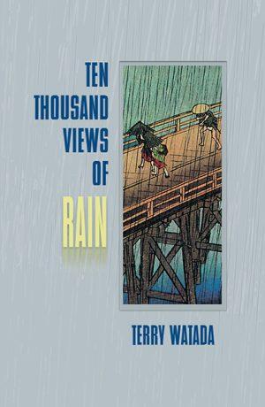 Ten Thousand Views of Rain